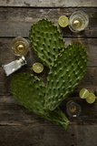 Nopales and Tequila Photographic Print by Lew Robertson