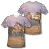 Wild Wings - Sunset Cruise (Front/Back Print) T-Shirt