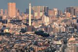 Tokyo Skyline at Sunset Photographic Print by Sandro Bisaro