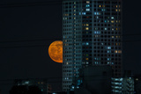 Moon Rising behind Tokyo Apartment Building Photographic Print by Benjamin Torode