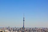 Tokyo Skyline Photographic Print by Tom Bonaventure