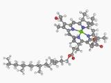 Chlorophyll B Molecule Photographic Print by Laguna Design