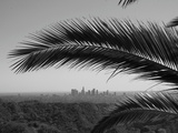 Los Angeles Skyline from Hollywood Hills Photographic Print by Mike Shaffer
