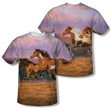 Wild Wings - Sunset Cruise (Front/Back Print) T-shirts