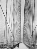 Steel Cabled Bridge Photographic Print by Hulton Archive
