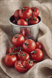 Tomatoes Photographic Print by Lynne Daley