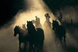 Australian Stock Horses Being Mustered at Stockyard Creek, Victoria, Australia Papier Photo par Peter Walton Photography