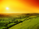 Rolling Landscape and Flock of Sheep Photographic Print by Images Etc Ltd
