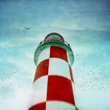 Lighthouse with Birds Photographic Print by francois dion