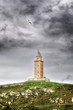 The Tower Photographic Print by Carlos Fernandez