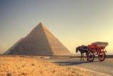 Pyramids Photographic Print by Mekhamer Photography