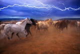 Horse Stampede Photographic Print by Lyle Leduc