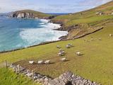 Near Slea Head, Dingle Peninsula, Ireland Photographic Print by Ken Welsh