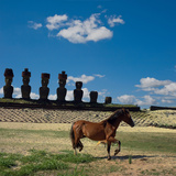 Freedom in Rapa Nui Photographic Print by Amateur photographer, still learning...
