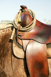 Saddle on Horse Photographic Print by April Bauknight
