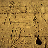 Ancient Egyptian Carving, Ramesseum Temple, Luxor Photographic Print by Hisham Ibrahim