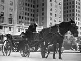 Horse Drawn Carriage, NYC Photographic Print by George Marks