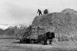 Loading Hay Photographic Print by Arthur Rothstein