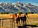 Teton Trio in the Fall Photographic Print by Jeff R Clow