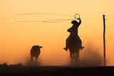 Rodeios at Sunset Photographic Print by Alberto BN Junior