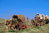 Mormons on Horse Carriages, Mormon Pioneer Wagon Train to Utah, near South Pass, Wyoming, United St Photographic Print by Holger Leue