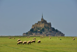Mont Saint Michel Photographic Print by Philippe MANGUIN Photographies