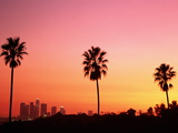 Usa, California, Los Angeles, Skyline and Palm Trees at Sunset Photographic Print by Jim Corwin