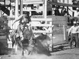 Rodeo Photographic Print by George Marks
