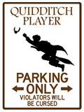 Quidditch Player Parking Sign Poster