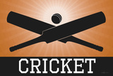 Cricket Orange Sports Print