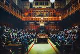 Monkeys In Parliament Plakaty