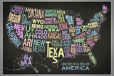 United States of America Stylized Text Map (Black) Print