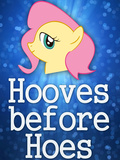 Hooves Before Hoes Brony Posters