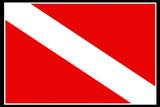Scuba Diver Down Flag Prints