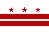 Washington DC Flag Posters