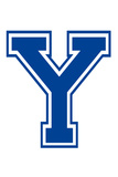 Varsity Letter Y Make Your Own Banner Posters