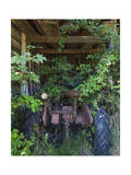 Rusted Tractor with Vines (Chapel Hill, NC) Photographic Print by Henri Silberman