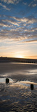 Beautiful Sunrise Vertical Panorama Landscape Reflected in Pools on Beach Posters by  Veneratio