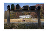 Mailboxes on Country Road (Chapel Hill, NC) Photographic Print by Henri Silberman