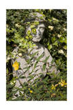 Garden Statue Wwi Soldier (English Garden Scene) Photographic Print by Henri Silberman