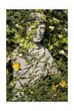 Garden Statue Wwi Soldier (English Garden Scene) Photographic Print by Henri Silberman