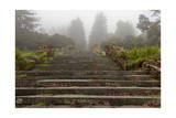Stone Steps, Joaquin Miller Park, Oakland, CA (Urban Park, Fog) Photographic Print by Henri Silberman