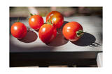 Tomatoes, Close-Up 1 (Oakland, CA) Photographic Print by Henri Silberman