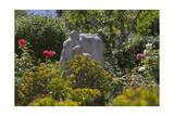 Telegraph Hill Garden, San Francisco, CA (Statue) Photographic Print by Henri Silberman