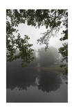 Cottage Reflection in Pond, Chapel Hill, NC (Country Landscape) Photographic Print by Henri Silberman