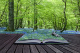 Magical Book with Contents Spilling into Landscape Background Photo by  Veneratio