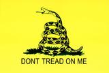 Gadsden Flag (Don't Tread On Me) Tea Party Historical Kunstdruck