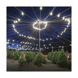 Christmas Trees for Sale 2 (Holiday Lights) Photographic Print by Henri Silberman
