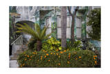 Painted House, Noe Valley, Exterior 2 (Botanical Decoration, San Francisco, CA) Photographic Print by Henri Silberman