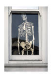Human Skeleton in Window (Chiropractic Practice Display) Photographic Print by Henri Silberman